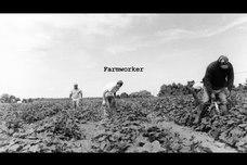 So God Made A Farmworker